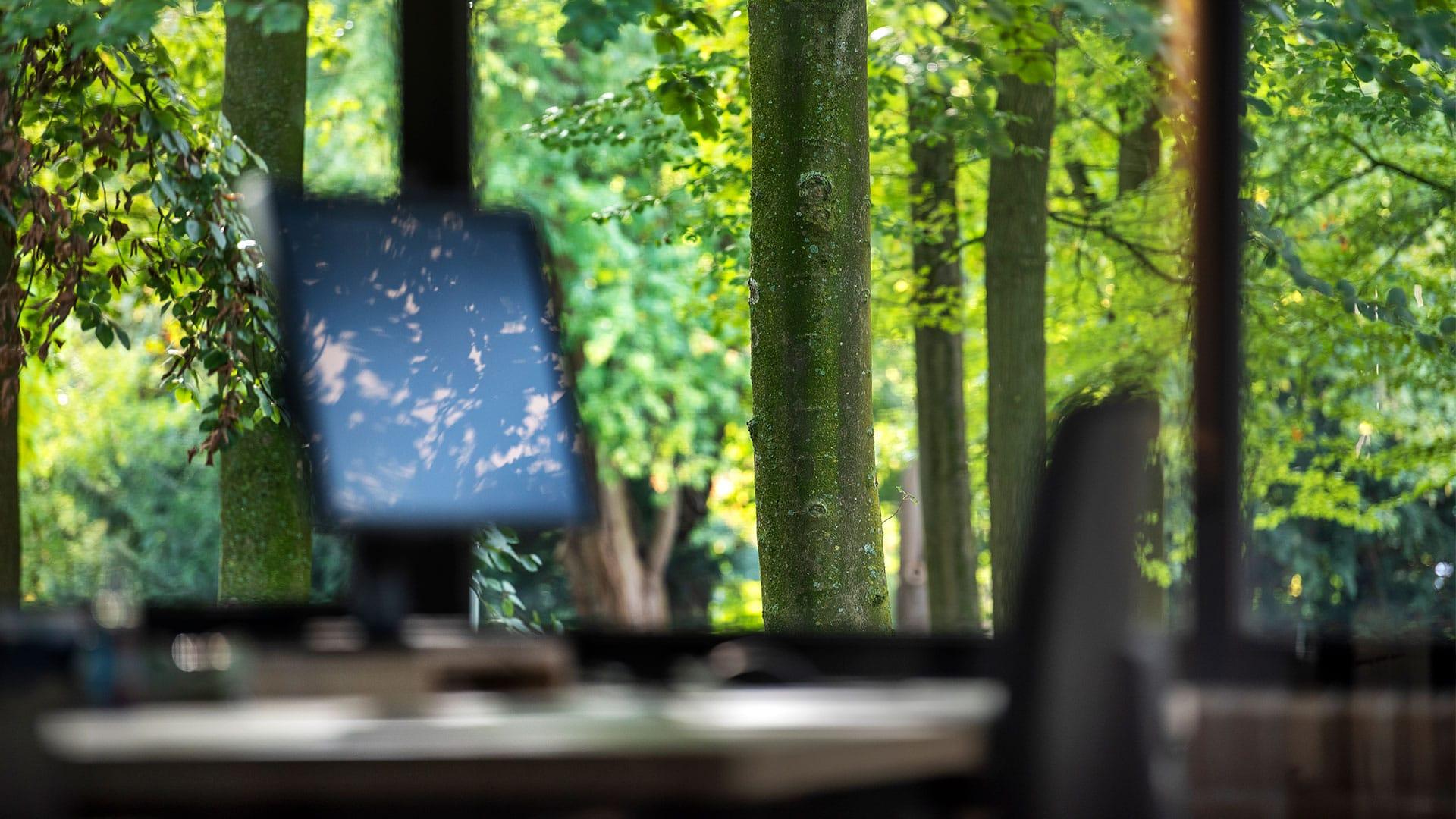 Arnhems-Buiten_B09_Weusten-Liedenbaum-Architecten_groene-omgeving